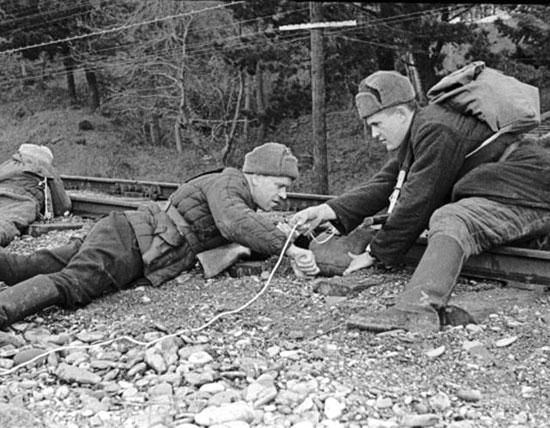 Революция ru Партизанское движение в Великой Отечественной  Партизаны Великой Отечественной войны 1941 1945